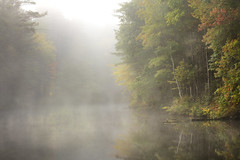 Pond (Chancy Rendezvous) Tags: pond fog mist morning autumn fall newengland massachusetts foliage howestatepark nikon nikkor chancyrendezvous