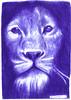 leon a lapicero (ivanutrera) Tags: leon león draw dibujo drawing dibujoalapicero dibujoenboligrafo lapicero pen animal wild wildlife sketch sketching boligrafo