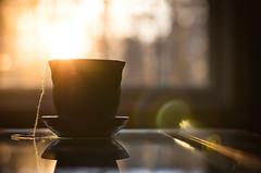 Friday Night Lights 309/366 (Watermarq Design) Tags: tea teacup teatime sunset sunlight goldenhour project366 relax bokeh