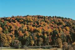 VT Foliage (Nsharp17) Tags: nikon nikonfe film 35mm kodak ektar ektar100 foliage red orange vermont leaves trees hill fall autumn