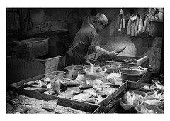 great jumping fresh fish (handheld-films) Tags: fish monger shop tradesman freshfish leaping jumping food hongkong street reportage documentary mono blackandwhite chinese alive