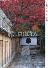 18055597 (finalistJPN) Tags: kyoto autumn fall colors autumnleaves kodaijitemple worldheritage japanesegarden zenspirit autumncolors evening discoverjapan japanguide nationalgeographic discoverychannel traveljapan stockphotos availablenow