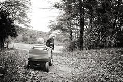 Trudging off to the back orchards (grilljam) Tags: autumn october2016 rockyridgeorchard applepicking ewan 7yrs seamus 4yrs