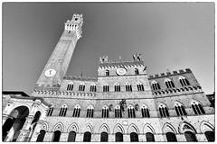 Siena, Tuscany, Italy (annovi.frizio) Tags: siena italy piazzadelcampo toredelmangia toscana italia italiani europei turismo medievale contrade paliodisiena senesi cavalli palio