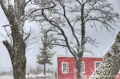 Glen Haven ... snow'n (Ken Scott) Tags: snow cannery glenhaven red pinetree leelanau michigan usa 2016 december fall autumn 45thparallel hdr kenscott kenscottphotography kenscottphotographycom freshwater greatlakes lakemichigan sbdnl sleepingbeardunenationallakeshore voted mostbeautifulplaceinamerica