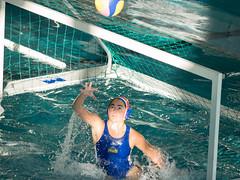 2C040860 (roel.ubels) Tags: len euro league waterpolo sport topsport utrecht uzsc 2016 krommerijn women