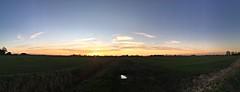Fenland sunset (badger_beard) Tags: sunset fens fenland norfolk welney west flat open fields broad sundown clouds expanse vast