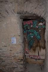 Valloria (114) (Pier Romano) Tags: valloria porte porta dipinta dipinte door doors painted imperia liguria italia italy nikon d5100 paese town dolcedo artisti pittori