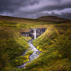 Svartifoss (_skynet) Tags: vatnajokull national park waterfall svartifoss iceland skaftafell water aqua foliage clouds cloud cloudy gloomy drama dramatic moody mood mountain glacier outdoor nature green blue yellow weather