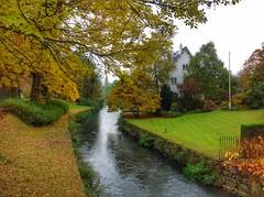 Autumn in Maastricht (sander_sloots) Tags: maastricht herfst jeker rivier geer autumn house bladeren river fleuve leaves colours kleuren