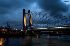 Ponte Estaiada da Barra da Tijuca - Rio de Janeiro (mariohowat) Tags: ponteestaiadadabarra ponteestaiada noturnas longaexposição brasil brazil riodejaneiro arquitetura metrôbarradatijuca