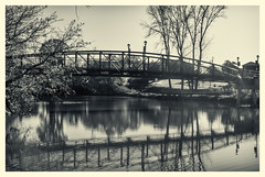 spanning_time (Explore) (gerhil) Tags: travel landscape park scenic outdoor bridge tree river water reflection monochrome blackwhite autumn november2016 niksilverefexpro2 photoborder