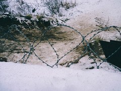 barbed wire (@PupkinZade) Tags: barbed wire