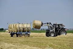 4 (carlo griot) Tags: trattore campagna fieno giallo cielo rimorchio agricolo estate ruote