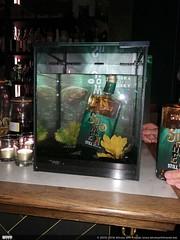 (Lesage Stefaan) Tags: europe geographical unclebabesburgerbar whisky gentghent oostvlaandereneastflanders belgium sunkenstill filliers whiskywithfriends ryewhisky people belgianwhisky