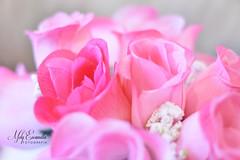 Soft pink flowers (melyescamilla1) Tags: flowers decor pink rosa roses decoracion pretty lovely beautiful soft softcolor pastel pastels pastelcolors colorful lens lente50mm 50mm18 bokeh nikon nikond3400 nikonista love lovelycolor floral flores