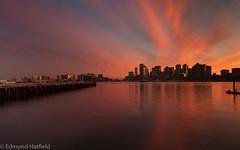 Sitting on the dock (shyto) Tags: boston eastboston 500px facebook sunset flickr edmondhatfield