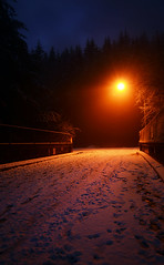 Red Light (Romain Collet) Tags: vancouver bc british columbia canada west coast snow light dark night trees scary dam cleveland north shore nikon d7100 photography