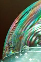 366 - Image 352 - Bubbles... (Gary Neville) Tags: 365 365images 366 366images photoaday 2016 sonycybershotrx100 sony sonycybershotrx100v sonyrx100v rx100 rx100v v mk5 garyneville