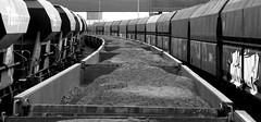 freighttrains (wojofoto) Tags: amsterdam bw zw wojofoto freighttrain cargotrain zwartwit blackandwhite monochrome straatfoto streetphoto wolfgangjosten mensen people