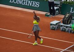 Serena Williams | TrinDiego, French Open (TrinDiego) Tags: usa french open williams michigan atp william womens tennis clay roland 1981 serena singles wta 2014 saginaw garros jameka trindiego