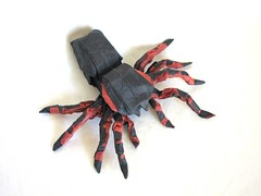 Mexican Red Knee Tarantula (folding~well) Tags: paper spider origami arachnid tarantula folding
