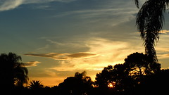 Florida thunder busters. (Jim Mullhaupt) Tags: pink blue sunset wallpaper sky orange sun white color tree weather silhouette yellow night clouds landscape oak nikon flickr dusk palm coolpix p510 mullhaupt jimmullhaupt