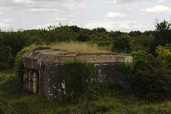 Bunker (Jannis_V) Tags: wwii bunker batterie urbex atlantikwall montcanisy bnervillesurmer kstenartillerie