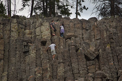 20140714-20140714-3D9A3296.jpg (MD & MD) Tags: road trip family camping summer vacation people cliff david animals rock sheep steve july yellowstonenationalpark yellowstone wyoming mariana basalt eater wy 2014 emmons dimitry sheepeater otherkeywords