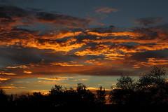 Sunrise 7 20 2014 #44 (Az Skies Photography) Tags: morning red arizona sky orange cloud sun black rio yellow skyline clouds sunrise canon skyscape eos rebel gold dawn golden salmon july az rico 20 rise daybreak 2014 arizonasky riorico rioricoaz arizonasunrise t2i arizonaskyline canoneosrebelt2i eosrebelt2i arizonaskyscape 7202014 july202014
