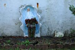 1482 the virgin known as Mary (Violentz) Tags: statue shrine catholic god madonna mary religion jesus mother stjoseph galilee icon holy virgin jew bible christianity bethlehem virginmary bostonma blessed babyjesus nazareth motherofgod ourladyofguadalupe ourlady blessedmother holymother hailmary ourladyoflourdes israelite ourladyofgrace ourladyoffatima lawnstatue thevirginknownasmary lawnshrine thetheotokos handmaidenofthelord heymarywatchagonnanamethatprettylittlebaby miriammotherofisa