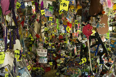 Crowded toy store (Daniel Pagano) Tags: argentina toys store nikon mendoza juguetes crowded toystore 2014 negocio juguetera abarrotado d5200 danielpagano