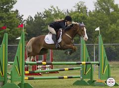(246) IMG_0984 (laureljarvis) Tags: show jumping tournament jumper orangeville equestrian equine ogilvy hayesco osjt