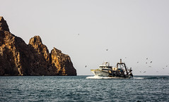 Fishing Boat back from the sea (Kariido85) Tags: port canon fishing morocco alhoceima marokko helios elhoceima