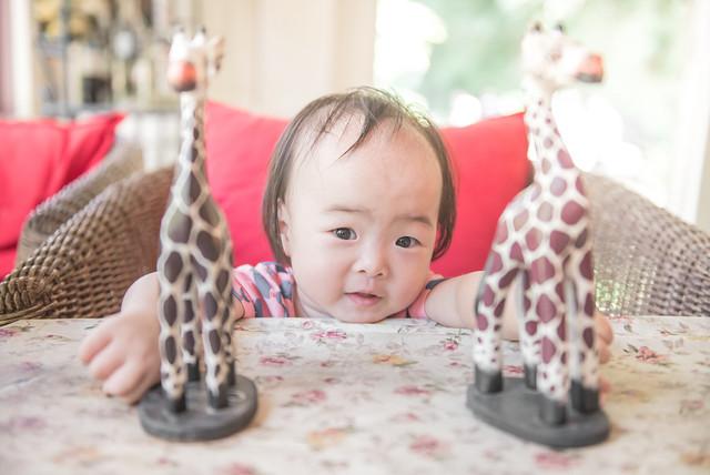 Redcap-Studio, 台北親子攝影, 兒童紀錄, 兒童攝影, 紅帽子工作室, 紅帽子親子攝影, 婚攝紅帽子, 陽明山親子攝影, 親子寫真, 親子寫真推薦, 親子攝影, 親子攝影推薦, 寶寶攝影,DSC_107