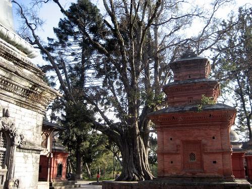 tempel 079