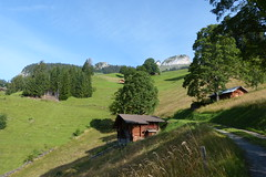 Blick (Erika,812) Tags: schweiz switzerland berneroberland wanderungburglauenenschynigeplatte