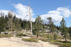 Hiking Back From Taft Point - Yosemite National Park (Robert F. Carter Travels) Tags: landscape hiking worldheritagesite yosemite yosemitenationalpark hikes sierranevadamountains sierramountains taftpoint hikingtrails