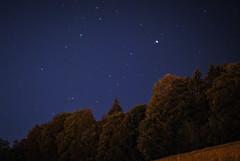 Stars above trees (Cappucc:no) Tags: blue sky tree night dark stars 50mm blu bleu ciel estrellas albero nuit arbre notte neuchtel calme buio etoiles stelle chauxdefonds paisible
