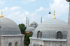 20140803-103230_DSC4538.jpg (@checovenier) Tags: istanbul turismo istambul turchia agyasofia cattedraledisantasofia intratours voyageprivée