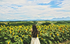 Running Down to the Riptide (Amanda Mabel) Tags: summer sky flower japan photography asia hokkaido sister free sunflowers faceless riptide hairflip portrai flowerfield amandamabel youngwildfree vancejoy runningdowntotheriptide
