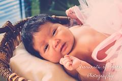 IMG_8625 (r_carla49) Tags: baby love girl sisters kiss basket princess adorable tutu pinktutu babyphotography amonthold mgp205