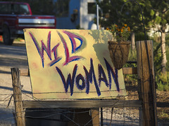 Wild Woman, Baker, NV (lpetterborg) Tags: baker nevada wildhorses greatbasin bristleconepines mtwheeler