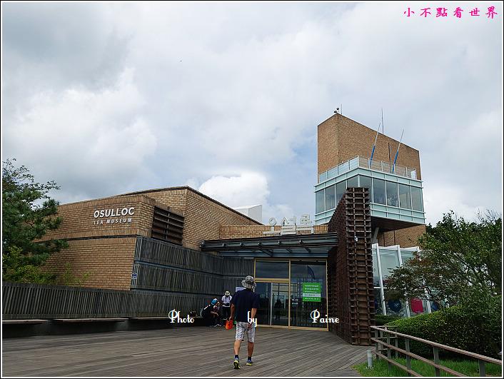 濟州島innisfree館 綠茶博物館 (7).JPG
