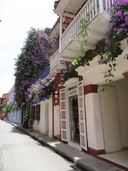 Cartagena-12