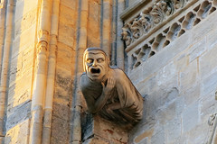 Bayeux (TSTnT) Tags: churches gargoyle spunk bayeuxfrance tstnt
