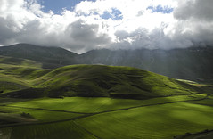 verde velluto (Elio Salvucci) Tags: