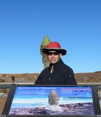 Haleakala National Park, Maui, Hawaii. (LBtino) Tags: vacation maui haleakala haleakalanationalpark mauihawaii leleiwioverlook haleakalaobservatories nikond800 loibui haleakalanationalparkkīpahuludistrictssummitdistricthaleakalahikingmaui hawaiiloibui haleakalavocano ahinahinaflowers