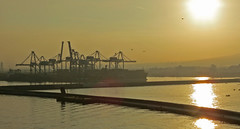 Port of Naples at sunrise (dramadiva1) Tags: italy industry water port sunrise mediterranean harbour cranes naples ripples shimmering portofnaples