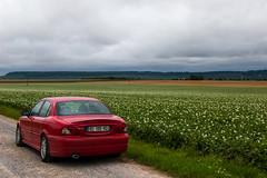 Ma Jaguar X-Type en pleine campagne (ichael C.) Tags: voyage road trip summer en ma vacances holidays country roadtrip jaguar t campagne tourisme trajet balade xtype 2014 pleine et  130714